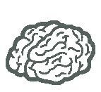 teaser-brain